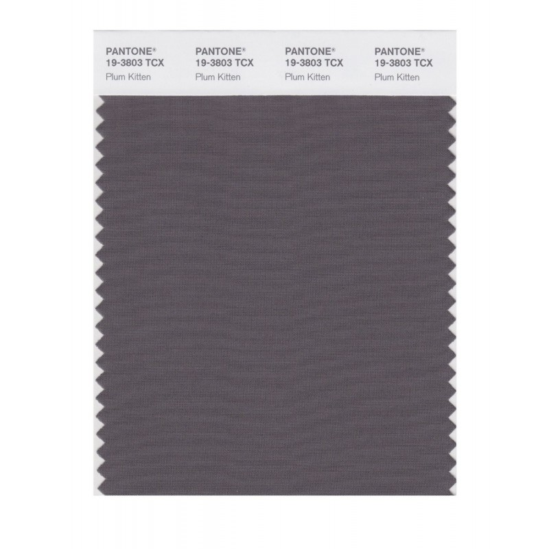 Pantone 19-3803 TCX Swatch Card Plum Kitten