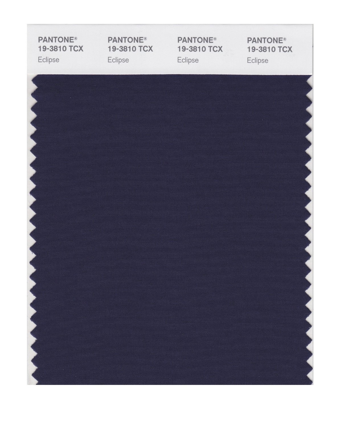 Pantone 19-3810 TCX Swatch Card Eclipse