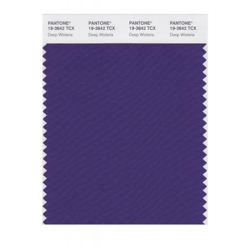 Pantone 19-3842 TCX Swatch Card Loganberry
