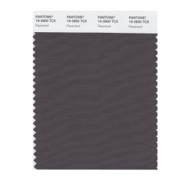 Pantone 19-3900 TCX Swatch Card Pavement