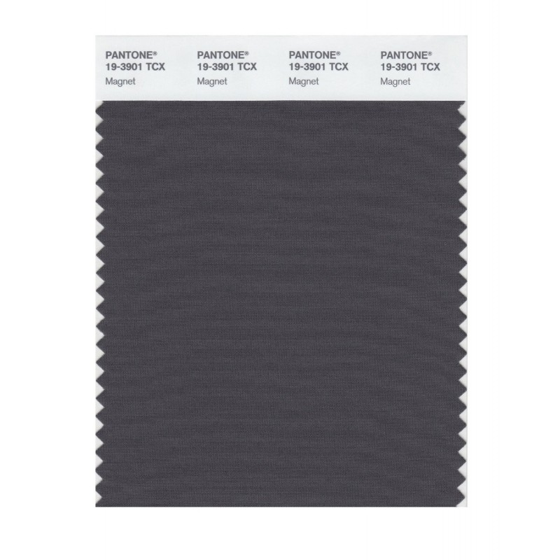 Pantone 19-3901 TCX Swatch Card Loganberry
