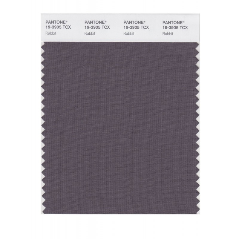 Pantone 19-3903 TCX Swatch Card Loganberry