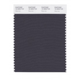 Pantone 19-3908 TCX Swatch Card Nine Iron