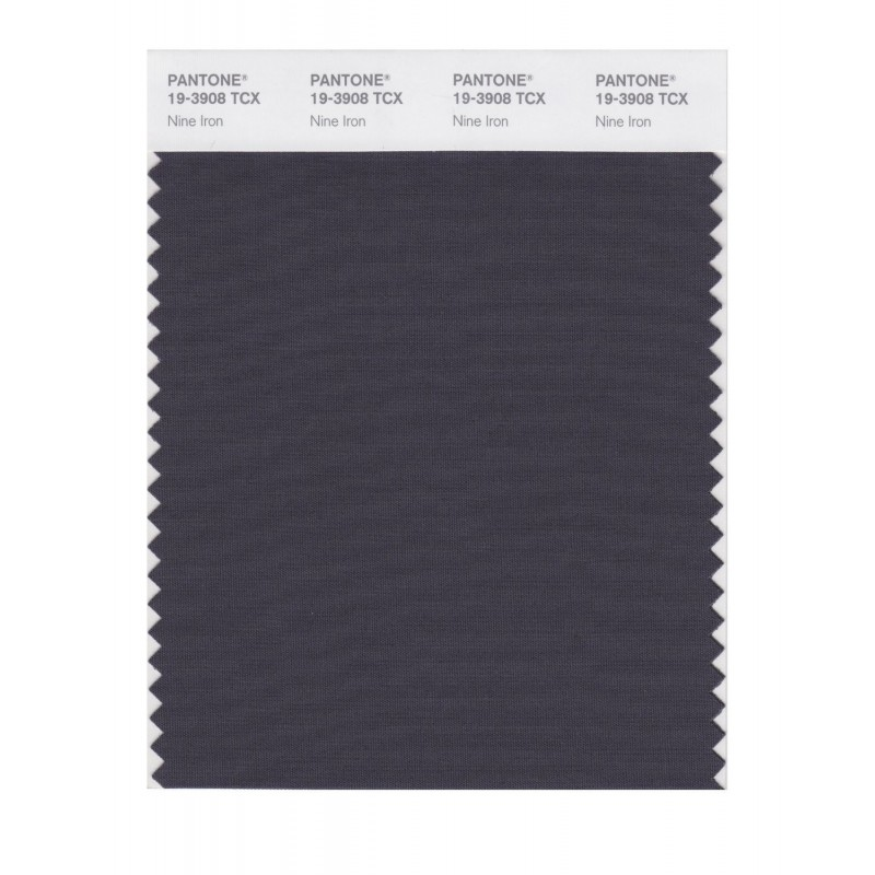 Pantone 19-3908TCX Swatch Card Loganberry