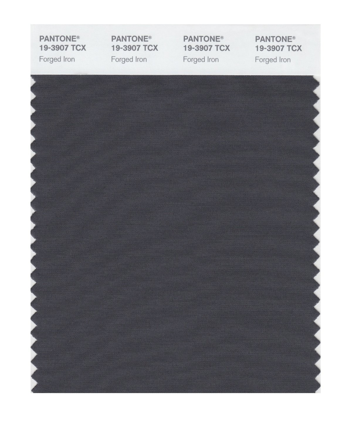 Pantone 19-3907 TCX Swatch Card Forged Iron