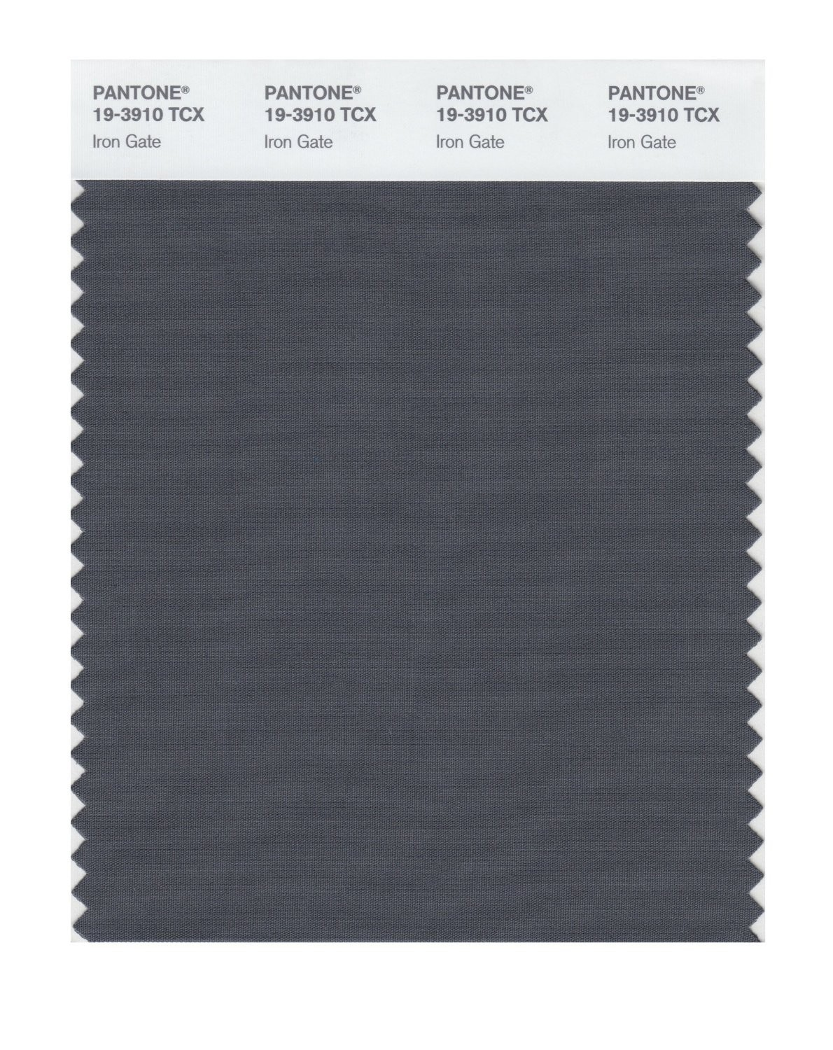 Pantone 19-3910 TCX Swatch Card Iron Gate