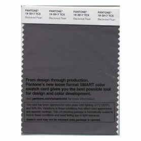 Pantone 19-3917 TCX Swatch Card Blackened Pearl