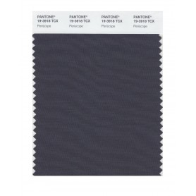 Pantone 19-3918 TCX Swatch Card Periscope
