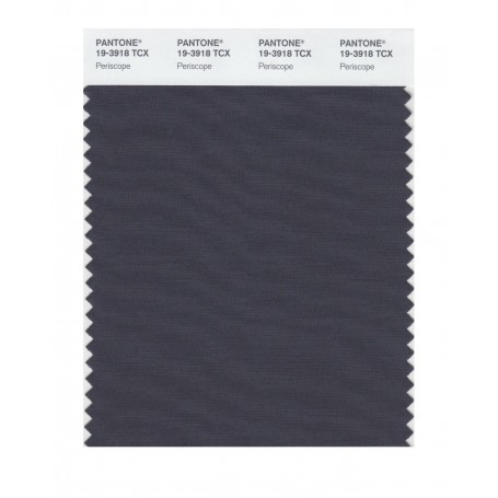 Pantone 19-3918 TCX Swatch Card Loganberry