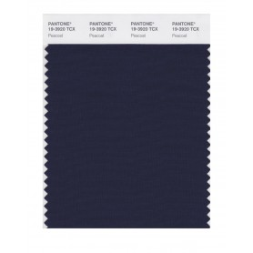 Pantone 19-3920 TCX Swatch Card Peacoat