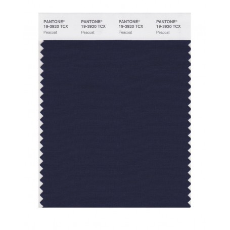 Pantone 19-3920TCX Swatch Card Loganberry