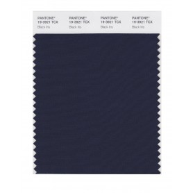 Pantone 19-3921 TCX Swatch Card Black Iris