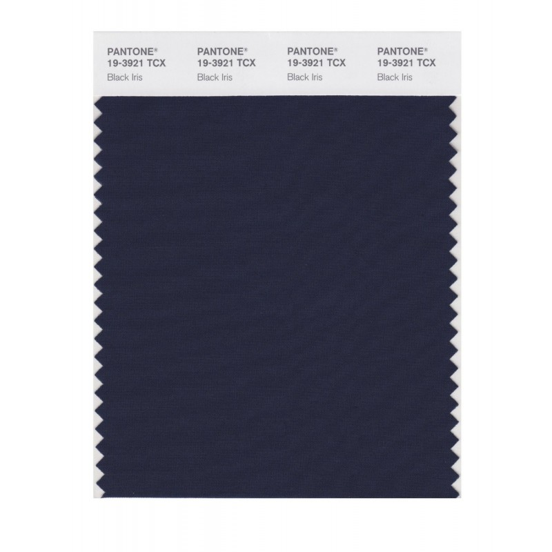 Pantone 19-3921TCX Swatch Card Loganberry