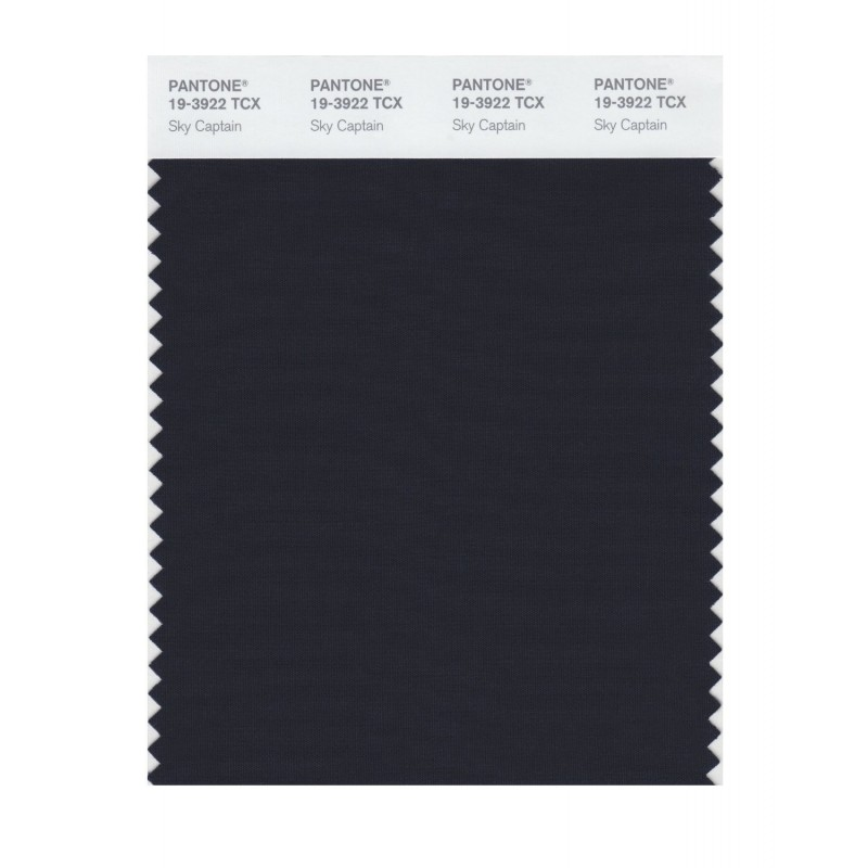Pantone 19-3922 TCX Swatch Card Sky Captain Buy in india