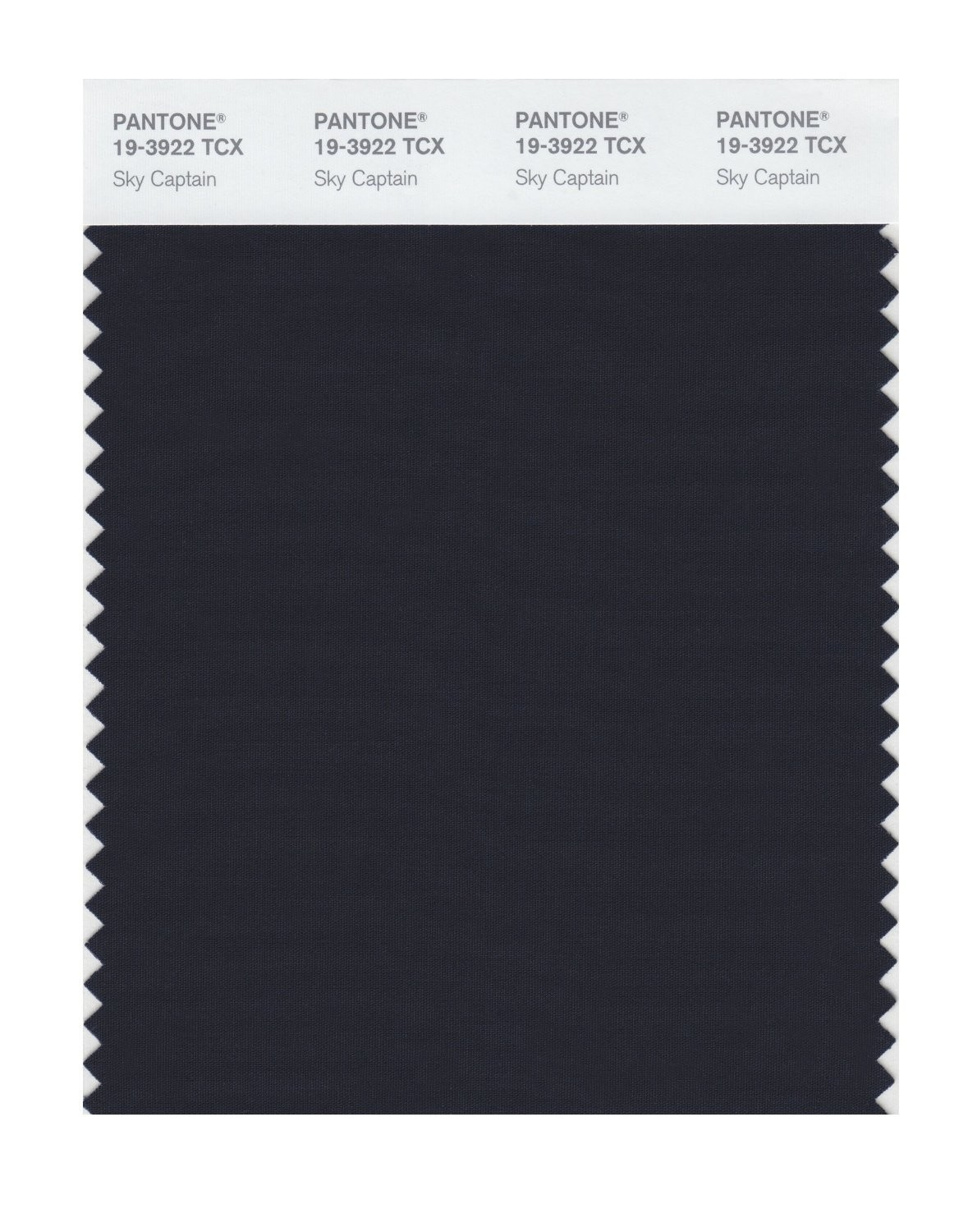 Pantone 19-3922 TCX Swatch Card Sky Captain