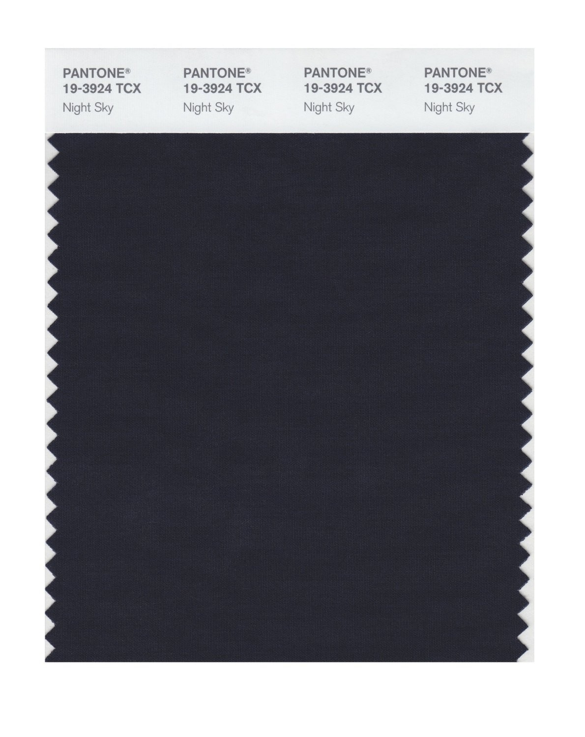 Pantone 19-3924 TCX Swatch Card Night Sky