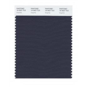 Pantone 19-3927 TCX Swatch Card Graphite