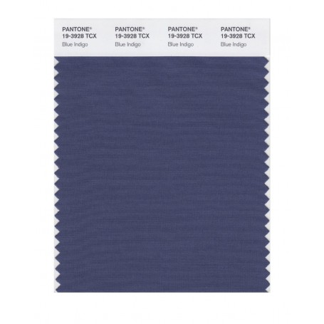 Pantone 19-3928 TCX Swatch Card Loganberry