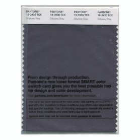 Pantone 19-3930 TCX Swatch Card Odyssey Gray