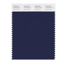 Pantone 19-3933 TCX Swatch Card Medieval Blue