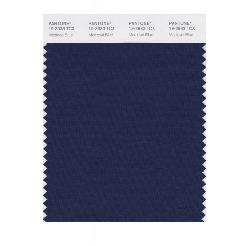 Pantone 19-3933TCX Swatch Card Loganberry