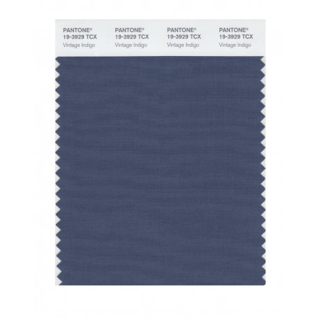 Pantone 19-3929 TCX Swatch Card Loganberry