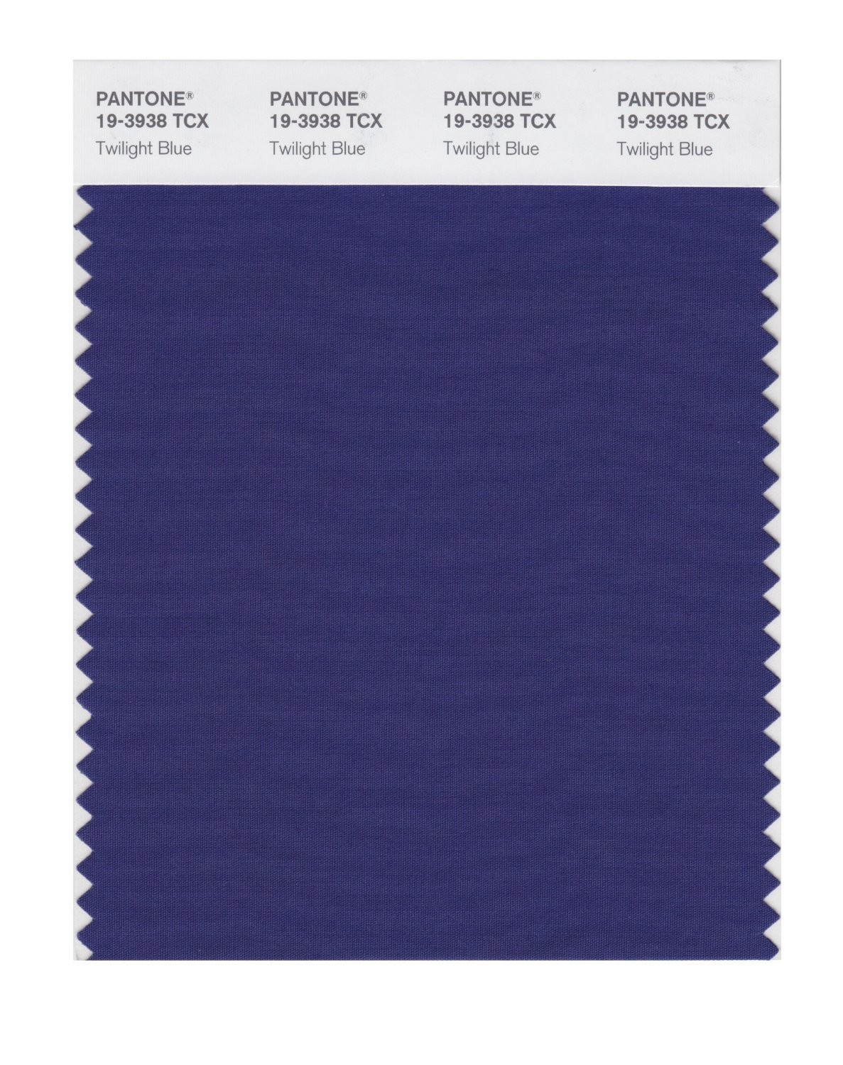 Pantone 19-3938 TCX Swatch Card Twilight Blue