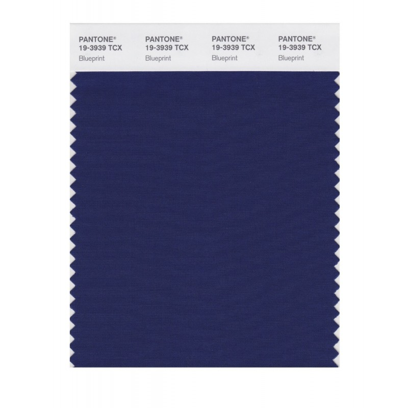 Pantone 19-3939 TCX Swatch Card Loganberry