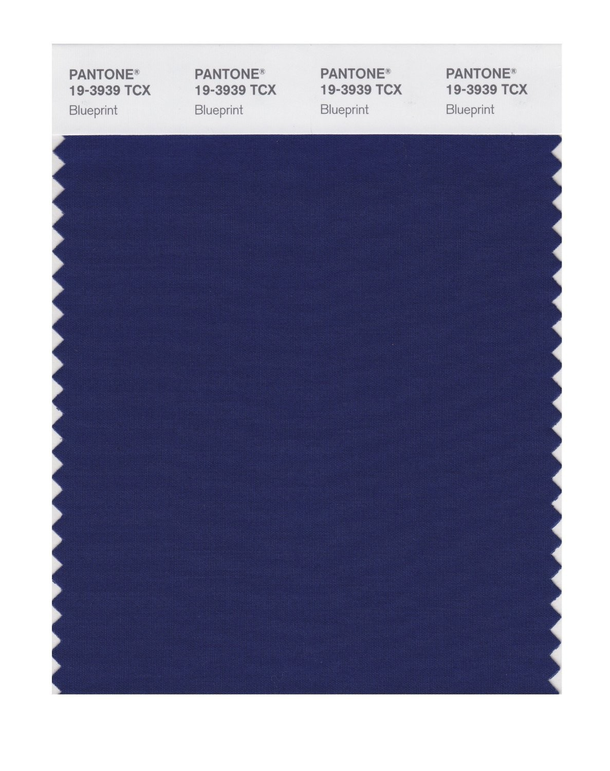 Pantone 19-3939 TCX Swatch Card Blue Print