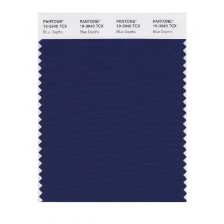 Pantone 19-3940 TCX Swatch Card Loganberry