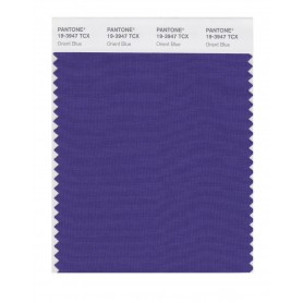 Pantone 19-3947 TCX Swatch Card Orient Blue