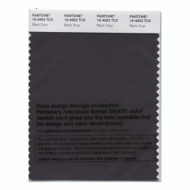 Pantone 19-4003 TCX Swatch Card Black Onyx