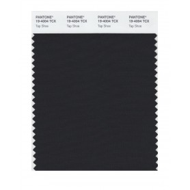 Pantone 19-4004 TCX Swatch Card Tap Shoe