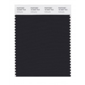 Pantone 19-4007 TCX Swatch Card Anthracite
