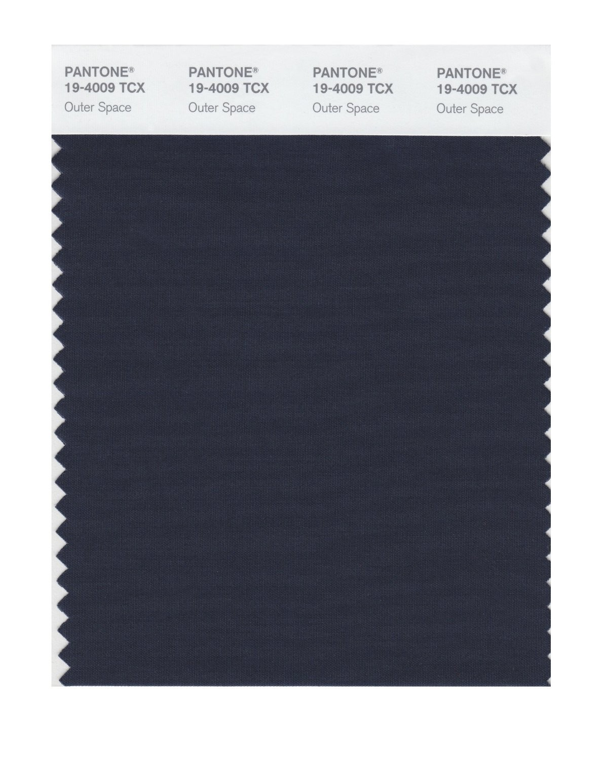 Pantone 19-4009 TCX Swatch Card Outer Space