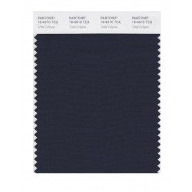 Pantone 19-4010 TCX Swatch Card Total Eclipse