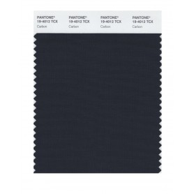 Pantone 19-4012 TCX Swatch Card Carbon