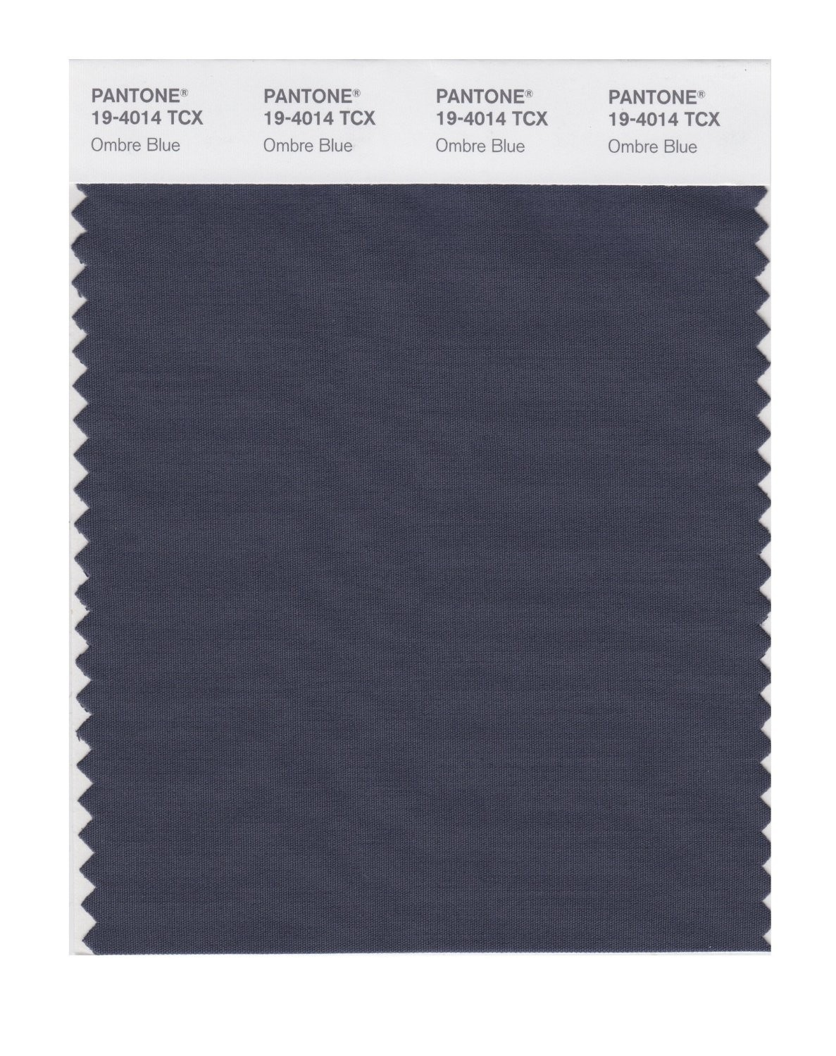 Pantone 19-4014 TCX Swatch Card Ombre Blue