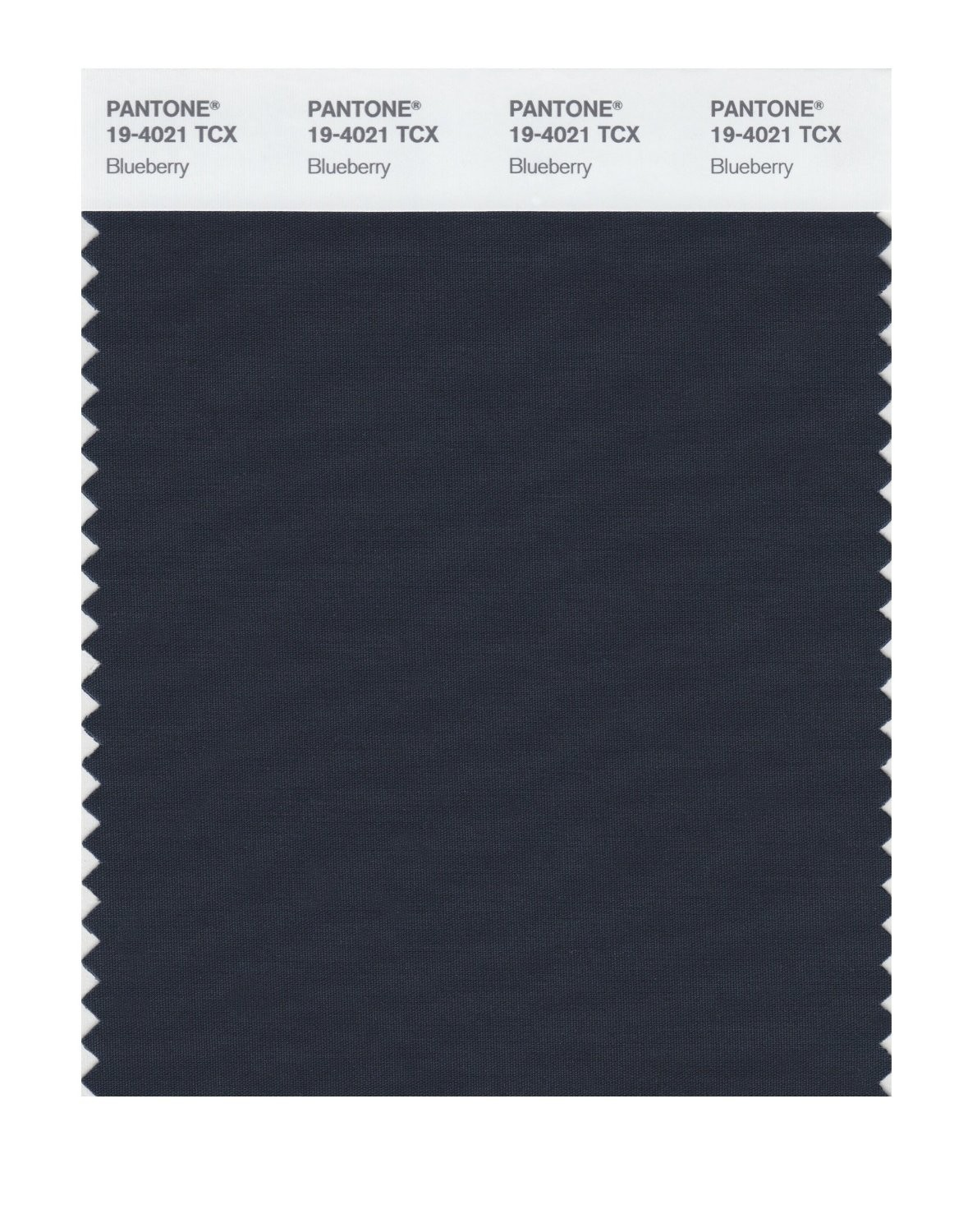Pantone 19-4021 TCX Swatch Card Blueberry