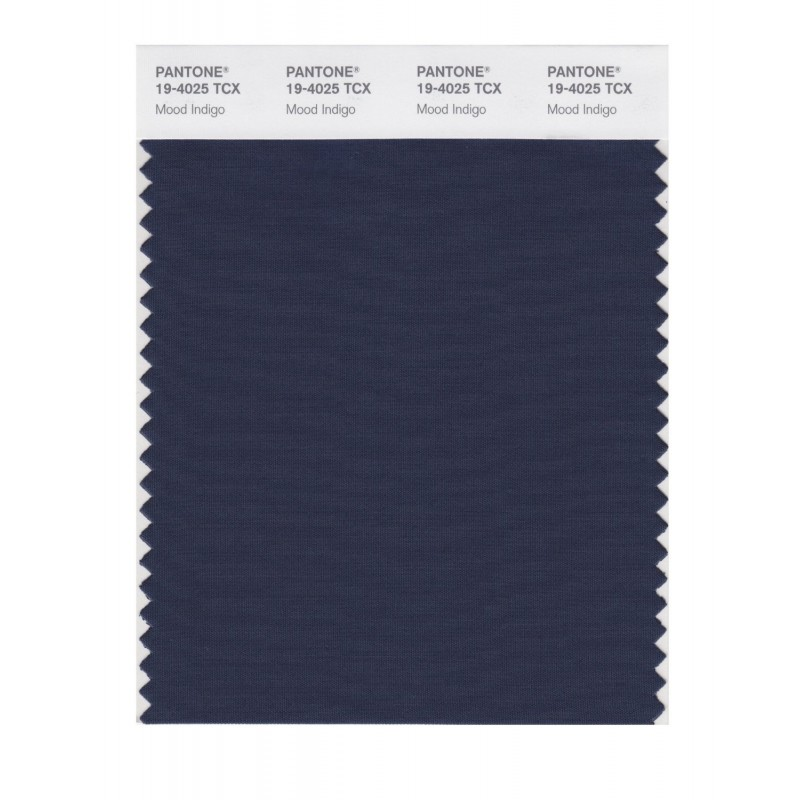 Pantone 19-4025 TCX Swatch Card Mood Indigo Buy in india
