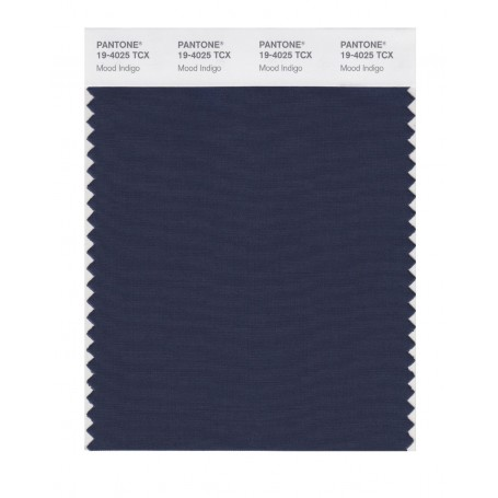 Pantone 19-4025 TCX Swatch Card Loganberry