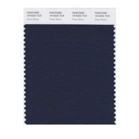 Pantone 19-4024 TCX Swatch Card Dress Blues