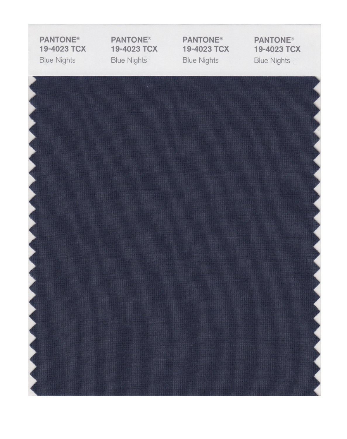 Pantone 19-4023 TCX Swatch Card Blue Nights