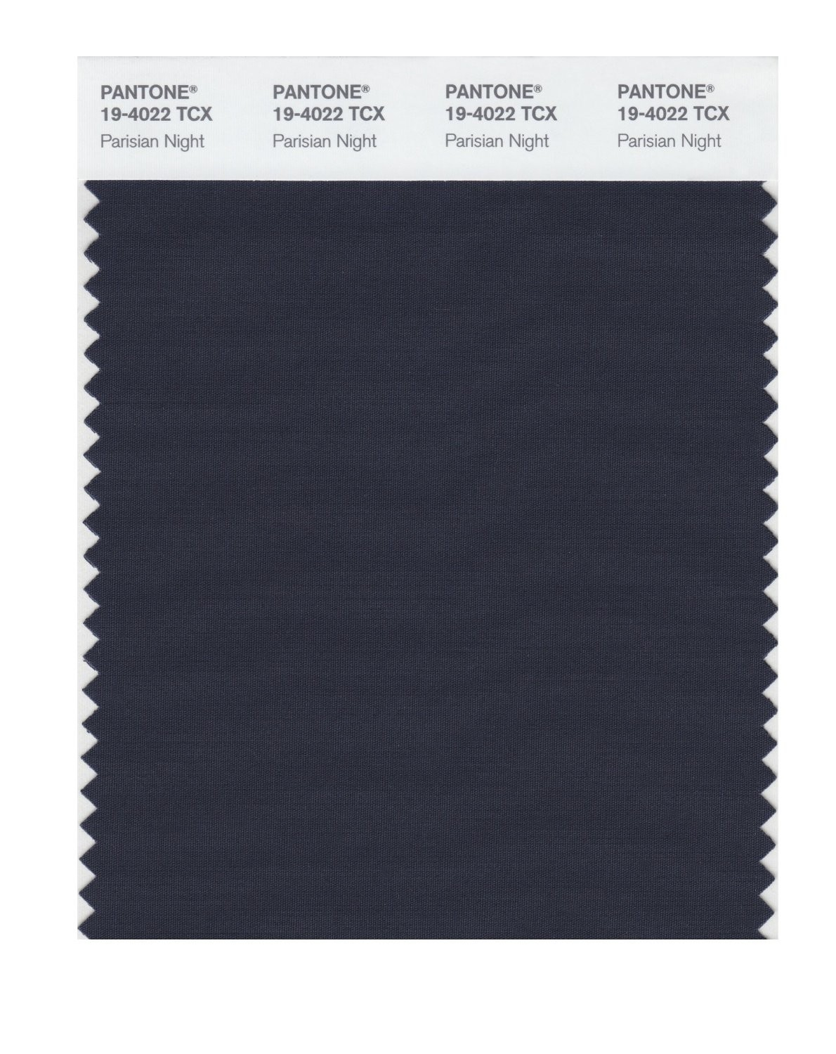 Pantone 19-4022 TCX Swatch Card Parisian Night