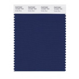 Pantone 19-4027 TCX Swatch Card Loganberry