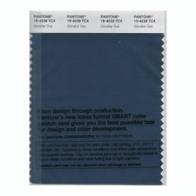 Pantone 19-4038 TCX Swatch Card Gibraltar Sea