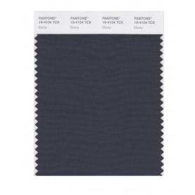 Pantone 19-4104 TCX Swatch Card Ebony