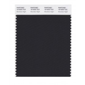 Pantone 19-4203 TCX Swatch Card Moonless Night