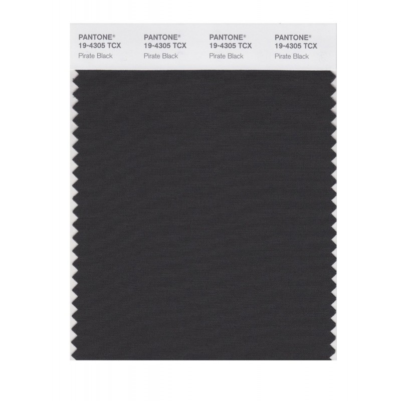 Pantone 19-4305 TCX Swatch Card Pirate Black