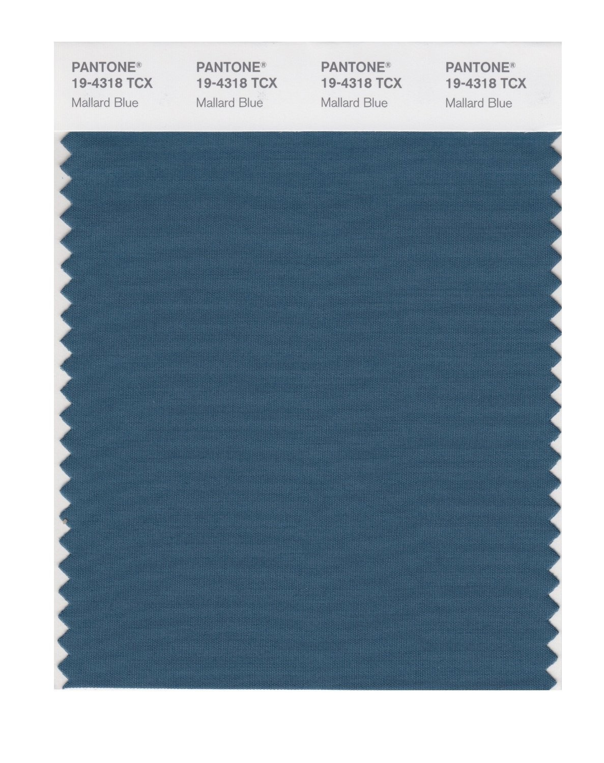 Pantone 19-4318 TCX Swatch Card Mallard Blue